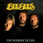 MORE THAN A WOMAN Bee Gees