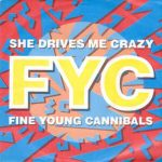 SHE DRIVES ME CRAZY Fine Young Cannibals